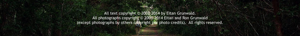 All text copyright © 2003-2014 by Eitan Grunwald.   All photographs copyright © 2003-2014 Eitan and Ron Grunwald  (except photographs by others copyright per photo credits).  All rights reserved.